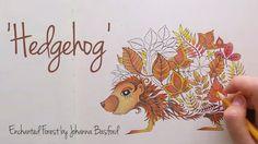 Enchanted Forest - Johanna Basford; Hedgehog Enchanted Forest Book, Enchanted Forest Coloring Book, Coloring Book Art, Adult Coloring Pages, Johanna Basford Coloring Book, Colouring Techniques, Sketch Inspiration, Color Pencil Art, Joanna Basford