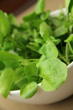 El Berro  . .Es un vegetal rico en nutrientes antioxidantes: una ración de 100 gramos proporciona el doble de vitamina C de lo que se necesita al día, más de la mitad de la A, en forma de betacaroteno, y la cuarta parte de las vitaminas B1, B2, B6, calcio y hierro. También posee cantidades significativas de vitamina E.