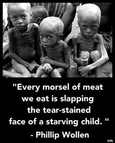"""Most meat-eaters ask """"why don't you care about humans as much as animals?"""" Being vegan is not only about ending the suffering of animals, we also care about human animals. We KNOW we are also saving the planet, protecting the environment AND trying to end world hunger. When you consume the flesh of an animal, you also consume the grain that fed them. All of the grains used to feed your """"food"""" could end world hunger. Go Vegan-End World Hunger!"""
