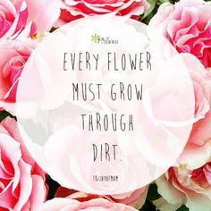 Every flower must grow through dirt..