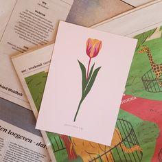 Irene, Illustrations, Studio, Cover, Books, Art, Art Background, Libros, Illustration