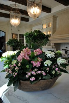 Beautiful hydrangeas potted in a dough bowl - pure beauty and what a great spot for them - the kitchen!!!!