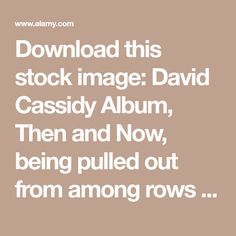 Download this stock image: David Cassidy Album, Then and Now, being pulled out from among rows of other CD's - GF0DXY from Alamy's library of millions of high resolution stock photos, illustrations and vectors.