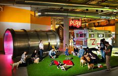 "Zynga, San Francisco-- Employees can bring their dogs to the office and as you can see, the decor is ""play""ful!"
