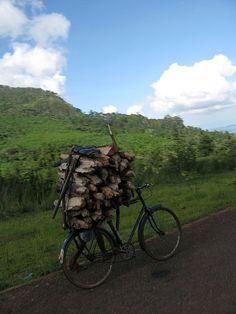 transporting wood, Malawi by nchenga