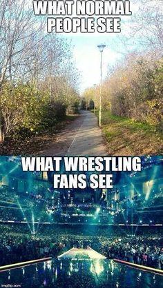 Why everyone should be a wrestling fan... #WWE