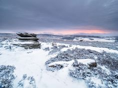 The best of your UK winter shots British Wildlife, Shots, Waves, Mountains, Gallery, Winter, Nature, Outdoor, Winter Time
