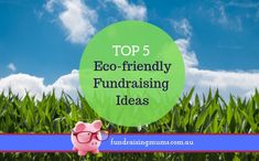 Discover the Top 5 environmentally friendly fundraising ideas for schools, and ensure you have sustainable fundraising Fundraising Ideas, Fundraising Events, Current Generation, Sustainable Practices, Recycling Bins, Fabric Squares, Life Purpose, Schools, Cleaning Wipes
