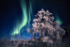 Northern lights in Finnish winter by Visit Finland, via Flickr
