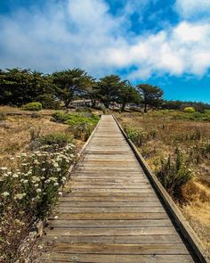 """San Luis Obispo Guide's Instagram profile post: """"The Moonstone Beach Boardwalk is more of a walk than a hike, but definitely one of the most beautiful places to explore the coast in SLO…"""" Pismo Beach, Moonstone Beach, Most Beautiful, Beautiful Places, Beach Boardwalk, Central Coast, San Luis Obispo, Railroad Tracks, Hiking"""