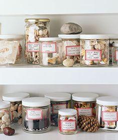 Shells and rocks stored on kids' bookshelves.