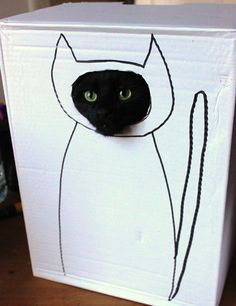 missing a kitty in a box...  :-(