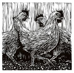 """Roosters"" linocut by Mike Gilligan. http://mikegilligan.weebly.com/ Tags: Linocut, Cut, Print, Linoleum, Lino, Carving, Block, Woodcut, Helen Elstone, Chickens, Hens, Birds, Feathers, Beaks, Claws."