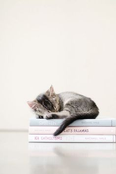 draw it, but have her sleeping on the Lioness Rampant book in stead