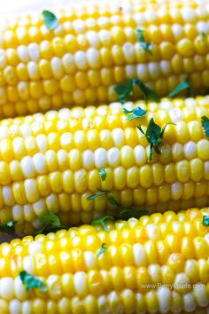 Juicy crunchy perfect air fryer corn a cob recipe. Easy and ready under 10 minutes! I promise, this will become your go to recipe for a sweet side dish corn for your air fryer. Air Frier Recipes, Air Fryer Oven Recipes, Air Fryer Dinner Recipes, Appetizer Recipes, Appetizers, Ww Recipes, Side Dish Recipes, Healthy Recipes, Vegetable Recipes
