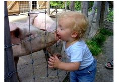 Kisses for piggy!