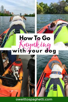 Have you ever wanted to try kayaking with your dog? Learn all the things you need and steps to take to make it a successful kayaking trip with your dog! Kayaking Quotes, Kayaking Tips, Kayak Fishing Tips, Fishing Guide, Camping List, Kayak Camping, Hiking Tips, Backpacking Tips, Best Hikes
