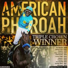 American Pharoah has become the first Triple Crown winner since 1978 after winning the Belmont Stakes. Celebrate the horse and Victor Espinoza's win for the Zayat family with these funny and celebratory memes. Bob Baffert, Horse Racing Bet, The Belmont Stakes, Preakness Stakes, Triple Crown Winners, American Pharoah, Sport Of Kings, Thoroughbred Horse, Racehorse