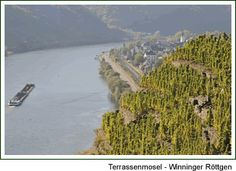 Winningen/Mosel - Riesling at his best!