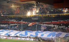 #Genovasoloblucerchiata #SampGenoa3-1