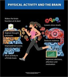 Physical Activity and the Brain.  Free download infographic.  Why active kids make better learners.