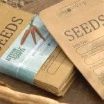 {6 Great Tips for Successful Seed Saving!}