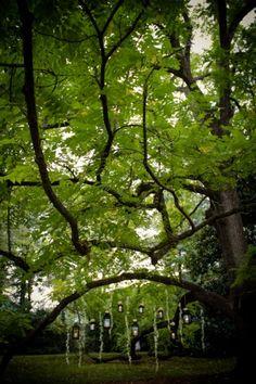 Mt Magnolia Inn | Luxe House Photographic to create a neverland fairy garden