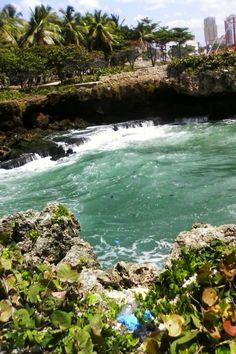 PLATÓ DE CARMEN PÉREZ: Importación de Alimentos de República Dominicana
