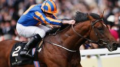 【10Bet】Which Horse Will Be the Talk of Ascot 2017? The Odds for Britain's Richest Racing Meet are Out! Can Aidan O'Brien bring home another winner? Sportsbook 10Bet has the Queen Anne Stakes and the rest of the Ascot covered!