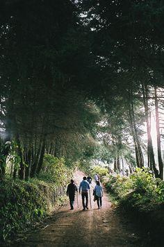 morning hike / Clara Canepa