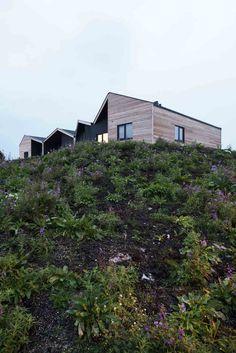 Driv Arkitekter | Boliger Træna Norway, Mansions, House Styles, Plants, Home Decor, Modern, Decoration Home, Room Decor, Villas