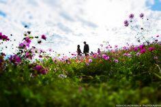 Wedding Engagement, Engagement Photos, Sea Photo, Fukuoka, Photo Sessions, Wedding Photos, Photoshoot, Bridal, Image