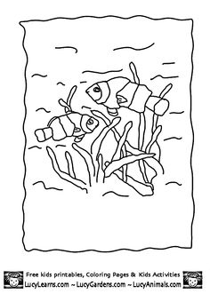 Coloring Pages Of Clown Fish 3