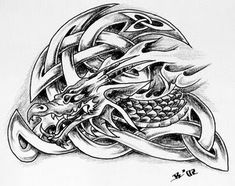 Celtic Dragon Tattoo Design 7