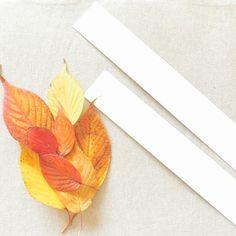 可愛い落ち葉の冠をDIYする写真