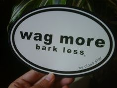 Wag more. Bark Less. Have these at come.sit.stay Nashville!