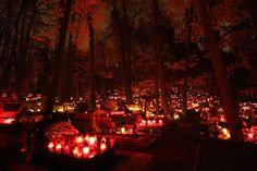 Wszystkich Świętych nocą na Cmentarzu Srebrzysko [All Saints' Day night in Srebrzyski Cemetery]. Gdańsk, Poland
