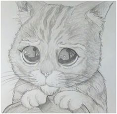 Resultado de imagen para dibujos a lapiz bonitos de animales