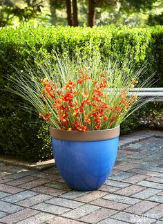 """Container Gardening Ideas Would you describe your indoor / outdoor style as """"eclectic?"""" Find out more about our vibrant Devyn Planters! Balcony Planters, Flower Planters, Garden Planters, Planter Pots, Container Plants, Container Gardening, Container Design, Organic Gardening, Gardening Tips"""