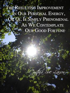 """""""The resulting improvement in our own personal energy, or Qi, is simply phenomenal as we contemplate our good fortune"""" - Cynthia Sue Larson, High Energy Money"""