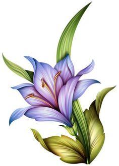 Art Floral, Flower Images, Flower Art, Art Sketches, Art Drawings, Coloring Book Art, Color Pencil Art, Botanical Flowers, Flower Wallpaper