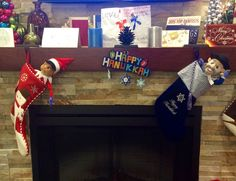 """""""The stockings were hung by the chimney with care..."""" so they snuggled in for rest after a busy holiday season.  Hoping our patients had a Happy Hannukkah and have a very Merry Christmas.  Thanks for playing along with Moe and Ezra the past few weeks, they'll see you next year!"""