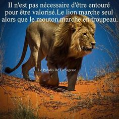 Parole d'un sage et citation !! **