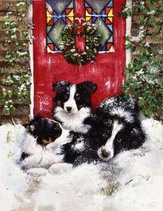 Collies on doorstep-watercolour-Xmas card design