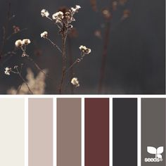 Beige brown red burgundy color of tea color palette color solution dark gray gray brown - Brown and maroon color scheme ...