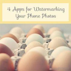 Photo Tips & Tutorials