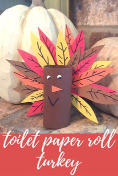 What a great Thanksgiving day craft for the kiddos to do while the REAL turkey is cooking! Toilet paper roll turkey!