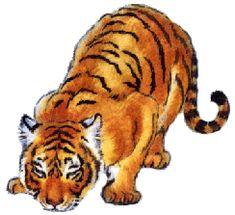 DYRENE I AFRIKA All Video, Videos, Illustration, Animals, Africa, Animales, Animaux, Animal, Illustrations
