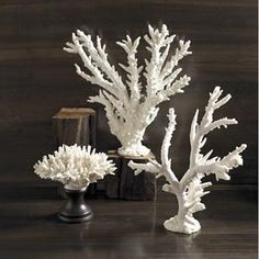 set of two white coral