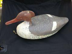Important Style Merganser Decoy Art Shell Duck Hen Old Tancook Fine Design Rare  #TancookIslandStyle
